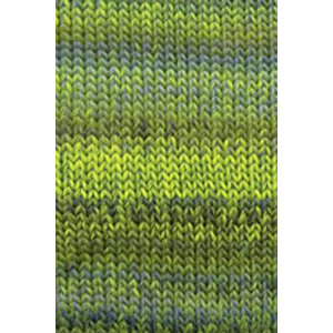 Lang Yarns Mille Colori Big 16 Groen