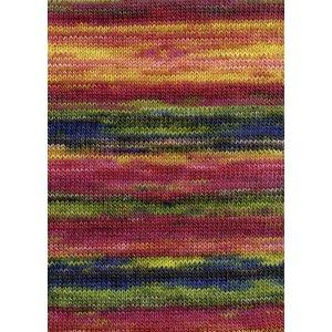 Lang Yarns Merino Dipinto 53 roze/geel/groen/blauw