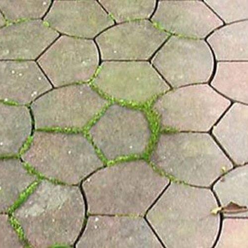 6 tips om groene aanslag te verwijderen ☘