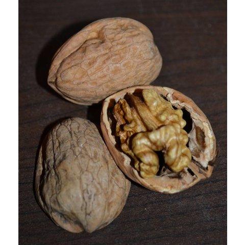 1 Kg walnuts, fresh from Jabugo
