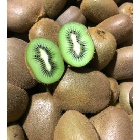 1 Kg of fresh kiwi - directly from my greenhouse in Portugal