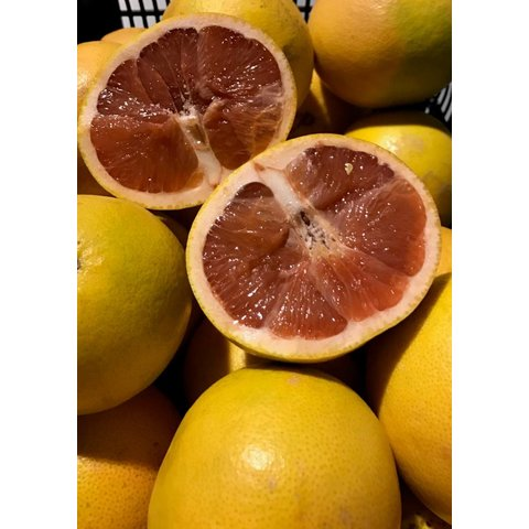 1 Kg red grapefruit, fresh from the tree