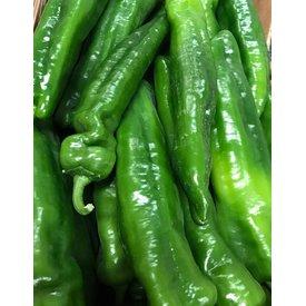 1 Kg Grüner Paprika