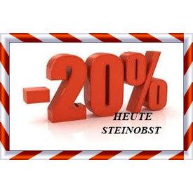 HEUTE 20 % RABATT AUF STEINOBST