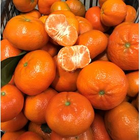 1 Kg Fresh tangerines directly from the tree