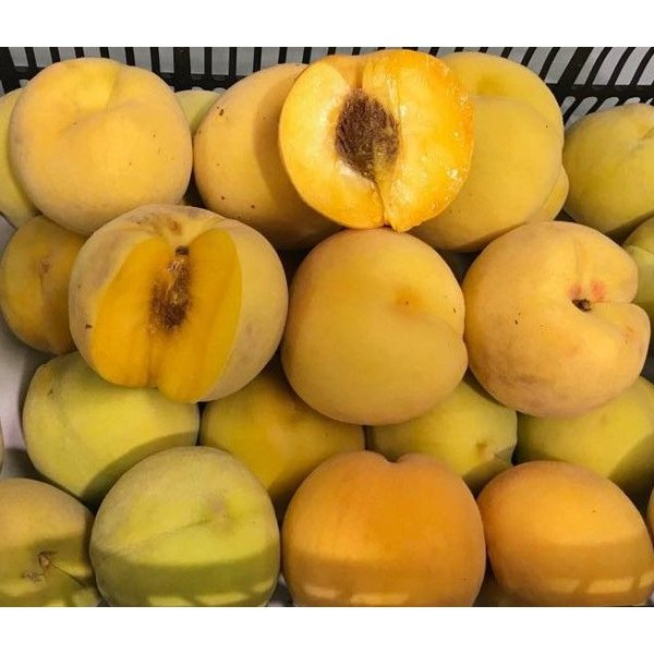1 Kg frische Pfirsiche