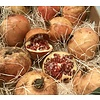 1 Kg Pomegranate - so ripe and sweet like they only exist in Andalusia
