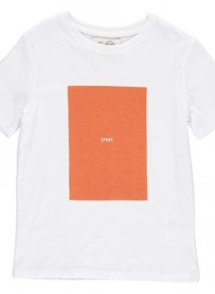 Gro Company T shirt mountain