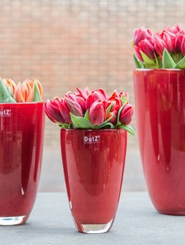 DutZ Flower vases red