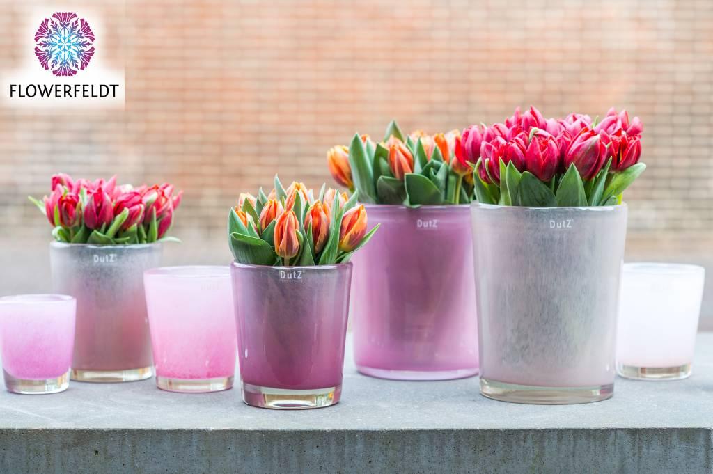 Dutz conic fuchsia vazen flowerfeldt for Dutz vazen verkooppunten
