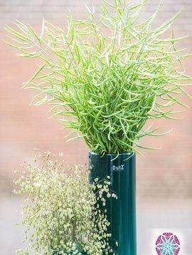 DutZ Cylinder vase tall pine tree