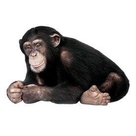 KEK Amsterdam KEK Amsterdam muursticker aap chimpansee