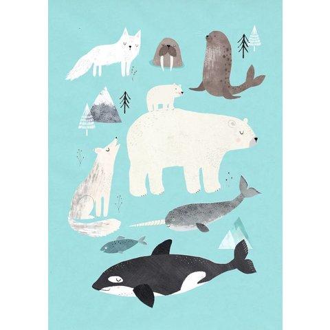 Petit Monkey kinderposter dieren Arctic Animals 50x70