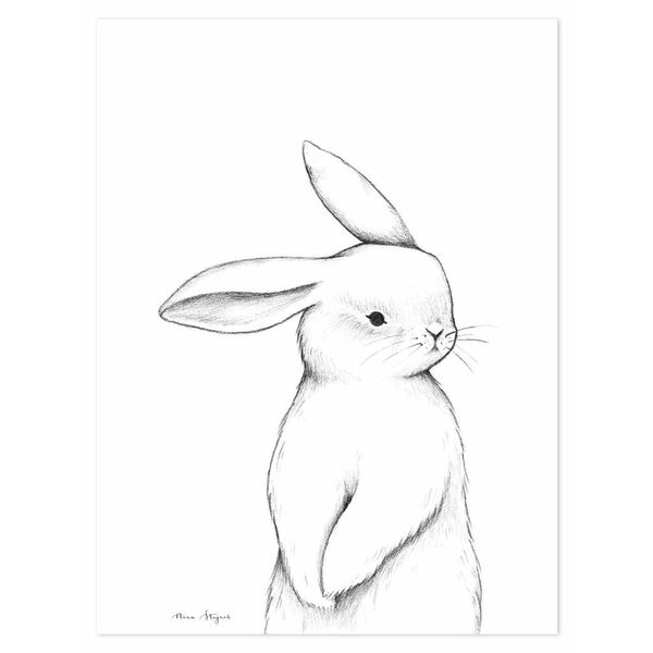 Lilipinso Lilipinso kinderposter konijn