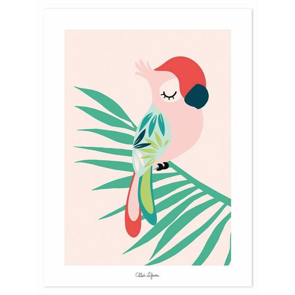 Lilipinso Lilipinso kinderposter papegaai roze