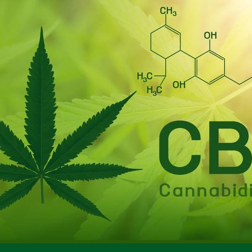 What is CBD oil and what do you use it for?
