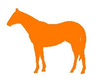 Geschikt voor paarden