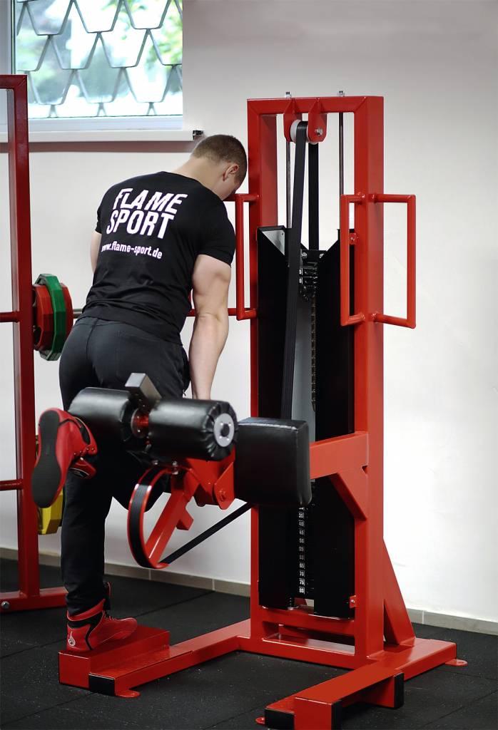 Standing Leg Curl (6MX) / Multi Gym