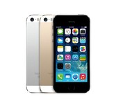 iPhone 5S 16GB White / Gold