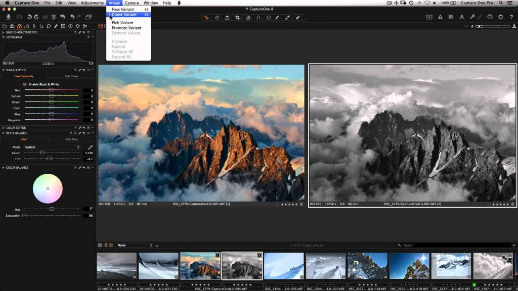 Capture One Pro 10 - 50 seats