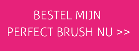 PerfectBrush bestellen