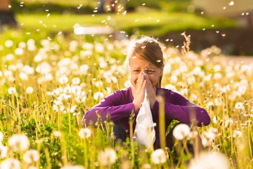Hooikoorts, gras en pollen allergie