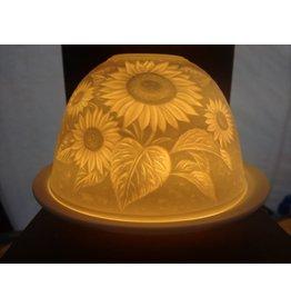 Starlight van Hellmann Versand Starlight Zonnebloemen