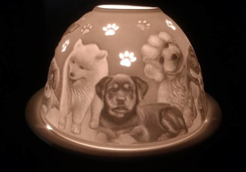 Starlight van Hellmann Versand Starlight Honden