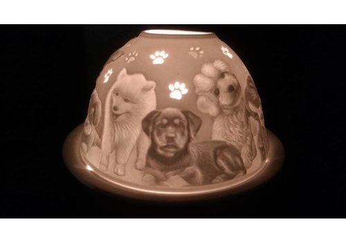 Starlight van Hellmann Versand Starlight Hunde