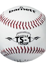 Baseball training package, JUNIOR