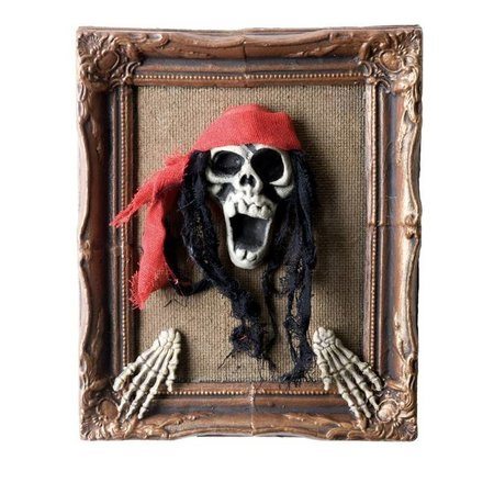 Schilderij Piratenkop