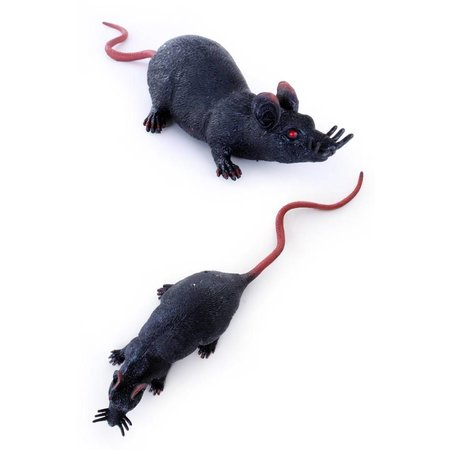 Animal world Rat zwart stretch