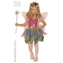 Regenboog Fee kostuum