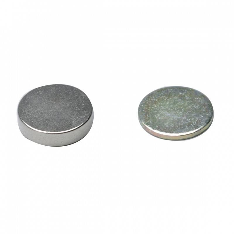 OASIS® FLORAL PRODUCTS Corsage magneet Ø1cm | 30 stuks