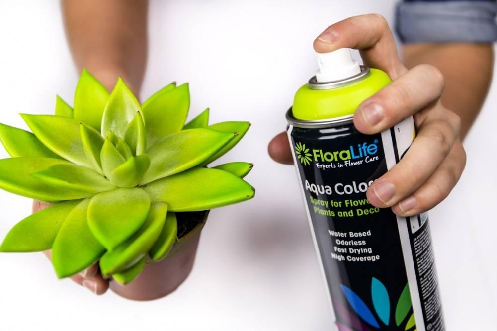 Floralife® Aqua Colors Goud 400ml | 1 stuks
