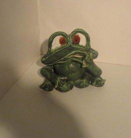 Frosch mittel Heilung 1