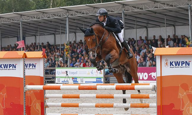 Europees kampioen springen enthousiast over magnesium olie