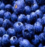 CLASSIC - Heidelbeeren - Fruchtsirup