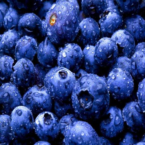 CLASSIC - Mirtillo - sciroppo di frutta
