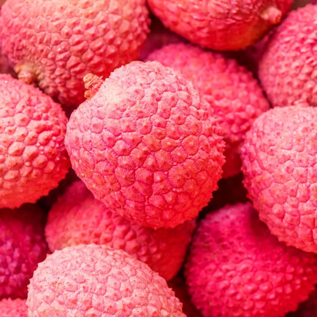 CLASSIC - Litchi- Fruitsiroop