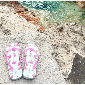 FLAMINGO & WATERMELON FLIP FLOPS