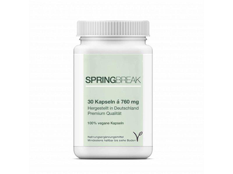 1 x SpringBreak - CLA Kapseln / Linolsäure