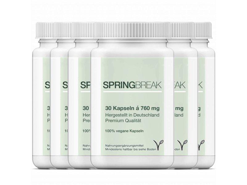 6 x SpringBreak - CLA Kapseln / Linolsäure