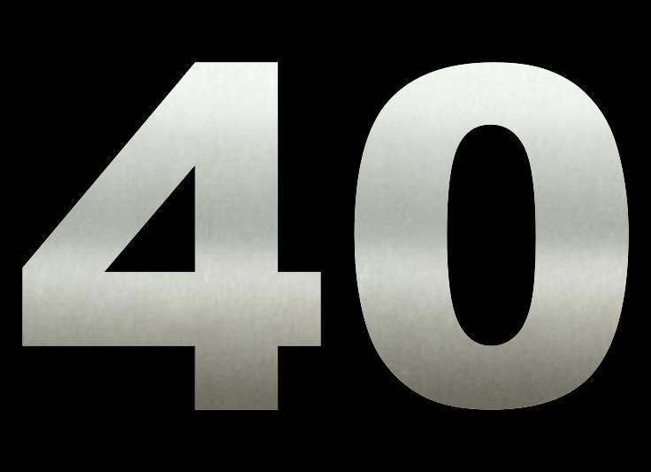 40 cm Huisnummers RVS Groot Bestellen