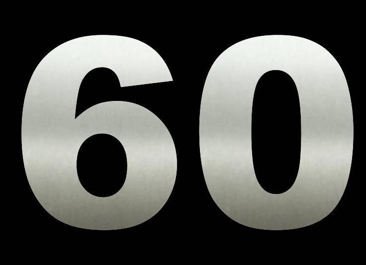 60 cm Huisnummers RVS Groot Bestellen