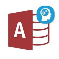 Microsoft  Microsoft Office Access Cursus