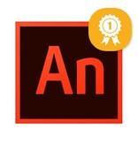 Adobe Adobe Animate/Flash Examen