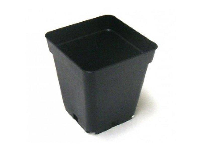 Teku Topf, eckig, 1,55 L, 13 x 13 x 13 cm