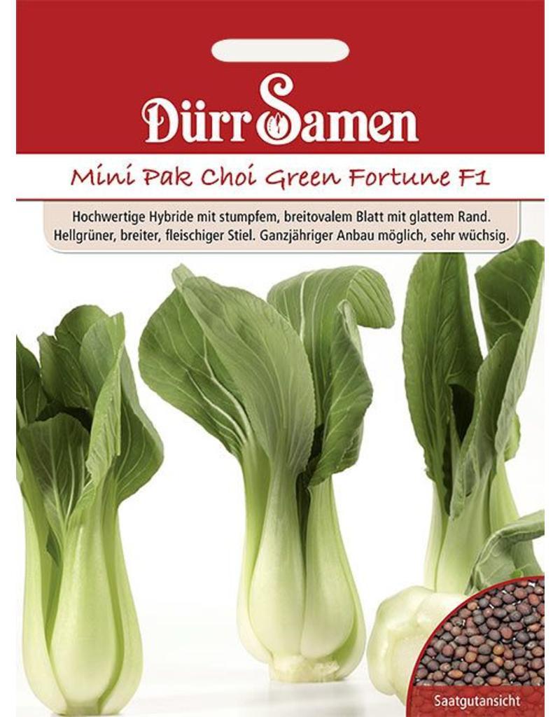 asia salat green fortune f1 saat gut. Black Bedroom Furniture Sets. Home Design Ideas