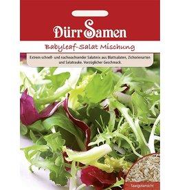 Dürr Samen Babyleaf-Salat Mischung für Balkon und Freiland